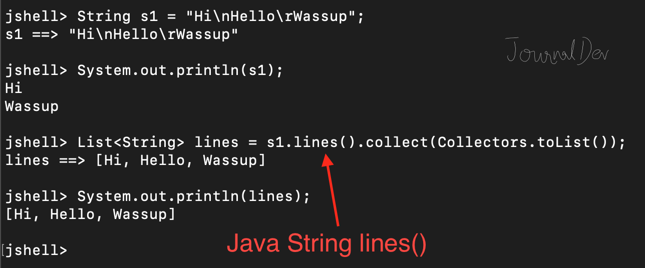 Java String lines() Function