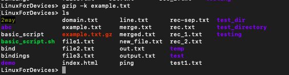 keep the original file with gzip command in Linux